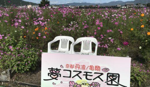 京都日帰りドライブ①・丹波・亀岡 たまごかけご飯「弁天の里」~「夢コスモス園」
